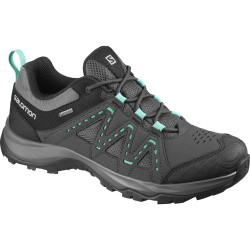 Salomon Rodica GTX W magnet/phantom/atlantis 409254 dámské nízké nepromokavé boty