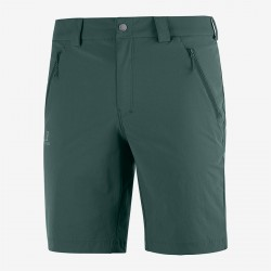 Salomon Wayfarer LT Short M green gables C13001 pánské lehké softshellové kraťasy
